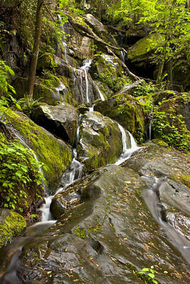Photograph - Waterfall 9008 by Peter Skiba