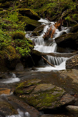 Photograph - Waterfall 9202 by Peter Skiba