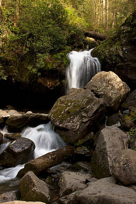Photograph - Waterfall 9288 by Peter Skiba