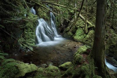 Photograph - Waterfall by Adam Gibbs