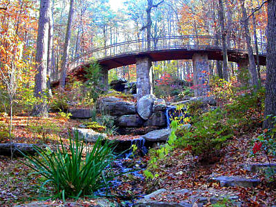 Photograph - Waterfall And A Bridge In The Fall by Anne Cameron Cutri