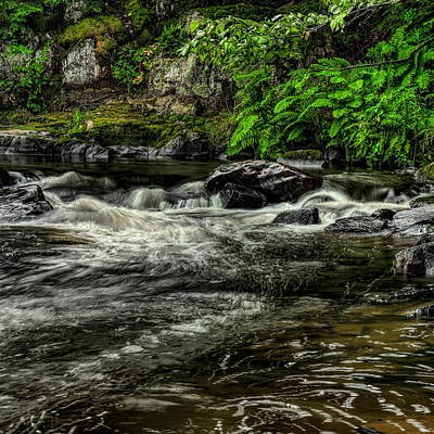Photograph - Waterfall And Ferns by Dale Kauzlaric