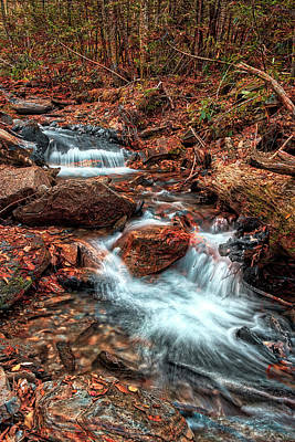 Photograph - Waterfall And Leaves by David A Lane