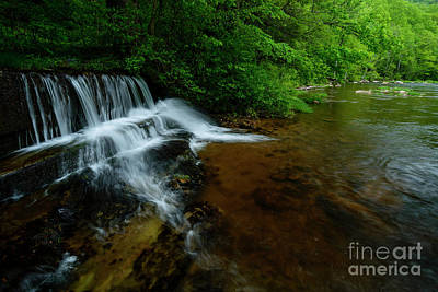 Waterfall And Williams River  Art Print by Thomas R Fletcher