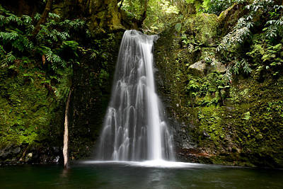 Photograph - Waterfall At Azores by Juraj Simek