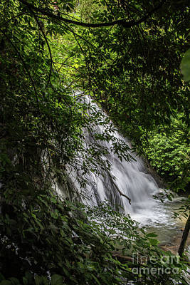 Photograph - Waterfall At Palenque by Kathy McClure
