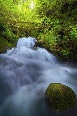 Waterfall At Shepperds Dell Falls Art Print by David Gn