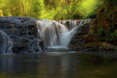Hiking Photograph - Waterfall At Sweet Creek Hiking Trail Complex by David Gn