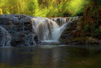 Waterfall At Sweet Creek Hiking Trail Complex Art Print by David Gn