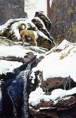 Painting - Waterfall Bighorn by Brian Durfee