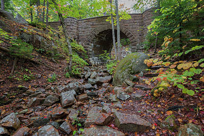 Photograph - Waterfall Bridge by Gary Lengyel