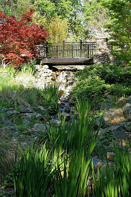 Photograph - Waterfall Bridge by Michele Myers