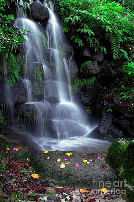 Lush Photograph - Waterfall by Carlos Caetano