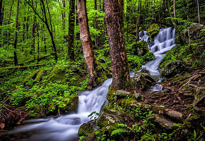 Photograph - Waterfall by Cathie Crow