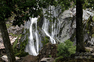 Photograph - Waterfall by Doc Braham