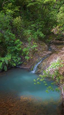 Valentines Day - Waterfall Great Barrier Island New Zealand by Joan Carroll