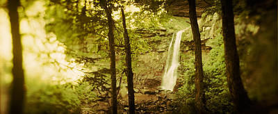 Catskill Photograph - Waterfall In A Forest, Kaaterskill by Panoramic Images