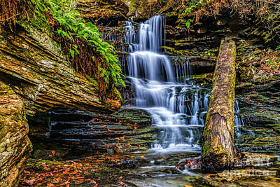 Photograph - Waterfall In Autumn by Nick Zelinsky