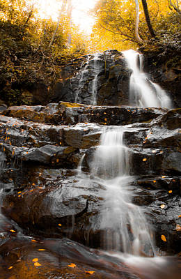 Photograph - Waterfall In Autumn by Shelby Young