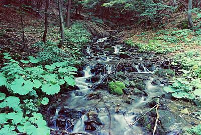 waterfall in Carpathian mountains 2 Art Print