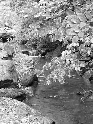 Photograph - Waterfall In Central Park B W by Rob Hans