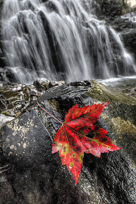 Digital Art - Waterfall In Fall by Patrick Groleau