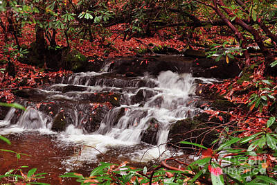 Photograph - Waterfall In Fall by Susan Cliett