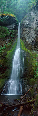 Waterfall In Olympic National Rainforest Art Print