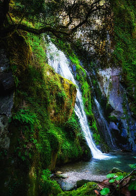 Photograph - Waterfall In Spring by Marion McCristall