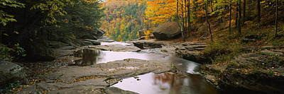 Catskill Photograph - Waterfall In The Forest, Kaaterskill by Panoramic Images