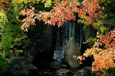 Photograph - Waterfall In The Garden by Tom Buchanan