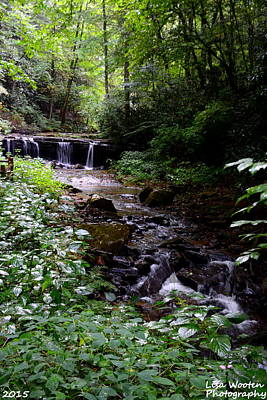 Photograph - Waterfall In The Woods by Lisa Wooten