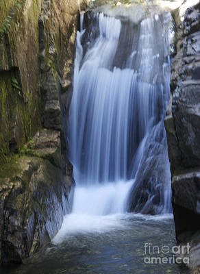 Waterfall In The Woods Art Print by Michael Mooney