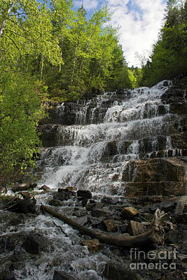 Photograph - Waterfall Mt by Cindy Murphy - NightVisions