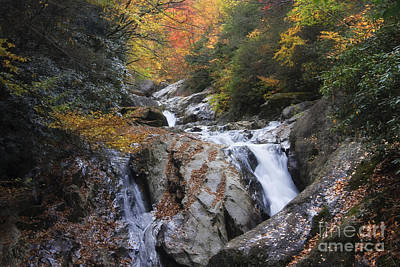 Photograph - Waterfall Off Blue Ridge Parkway by Jill Lang