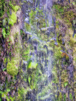 Photograph - Waterfall - Okarito Beach - New Zealand by Steven Ralser