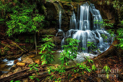 Art Print featuring the photograph Waterfall On Back Fork by Thomas R Fletcher