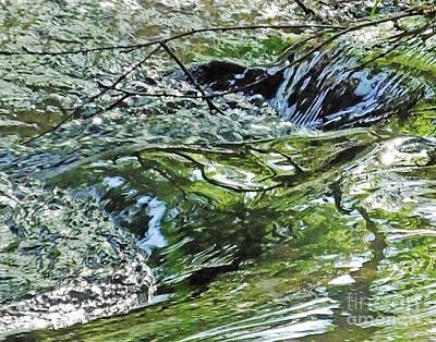 Photograph - Waterfall On Nancy Creek In Blue Heron Nature Preserve by Lizi Beard-Ward
