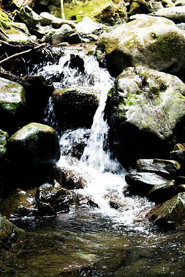 Photograph - Waterfall On Nf-84 #2 by Edward Hawkins II