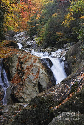 Photograph - Waterfall On West Fork French Broad River by Jill Lang