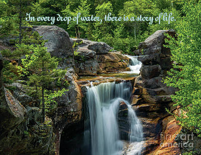 Photograph - Waterfall Quote by Alana Ranney