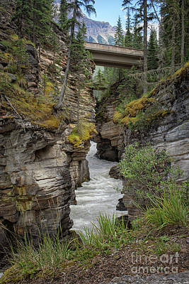 Photograph - Waterfall Running Through Maligne Canyon by Patricia Hofmeester