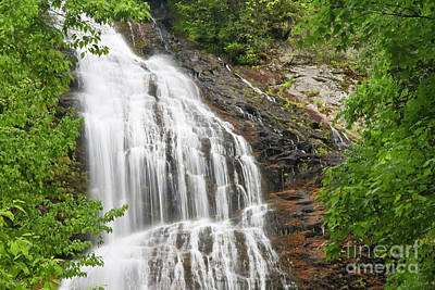 Photograph - Waterfall With Green Leaves by Jill Lang