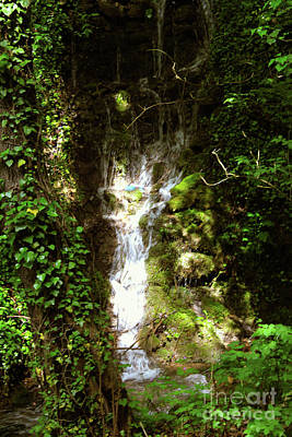 Photograph - Waterfalls by Donna L Munro