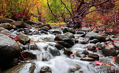 Photograph - Waterfalls In Autumn Forest by Charline Xia