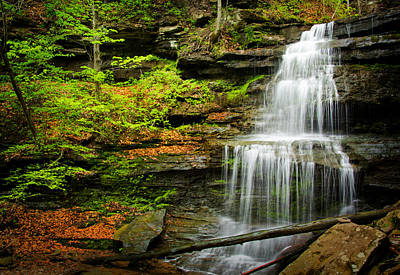Photograph - Waterfalls On Little Three Mile Run by Carolyn Derstine
