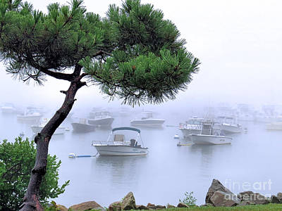 Photograph - Waterfront Fog by Janice Drew