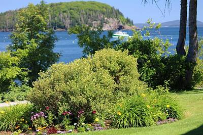 Photograph - Waterfront Garden by Living Color Photography Lorraine Lynch