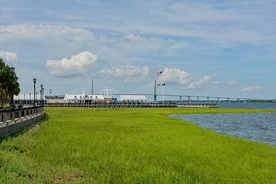 Charleston Wall Art - Photograph - Waterfront Park Charleston by Greg Joens