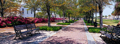 Park Benches Photograph - Waterfront Park Charleston Sc Usa by Panoramic Images